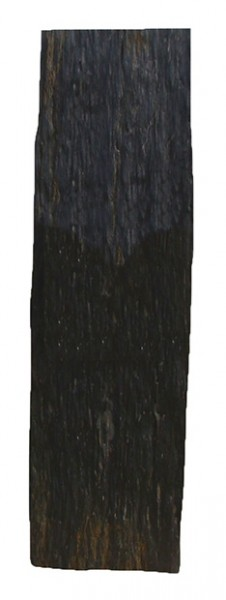 Sichtschutzplatte / Trittplatte Nero Schiefer, 200 x 50 cm